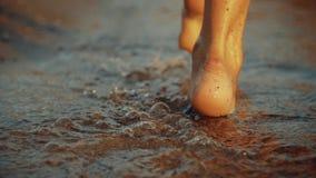 Muchacha que camina en la arena mojada de la línea de la playa Las piernas de la mujer joven que van a lo largo del océano varan  almacen de metraje de vídeo