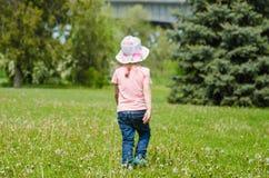 Muchacha que camina en la hierba con los dientes de león Fotografía de archivo libre de regalías