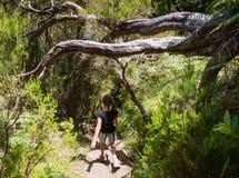Muchacha que camina en levada en la isla de Madeira Imágenes de archivo libres de regalías