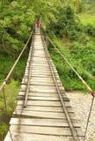 Muchacha que camina en un puente de madera Imagen de archivo libre de regalías