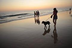 Muchacha que camina su perro en la puesta del sol, costa del diz del ¡de CÃ, Andalucía, España Fotos de archivo libres de regalías