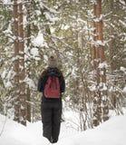 Muchacha que camina a través de bosque en invierno Imagen de archivo