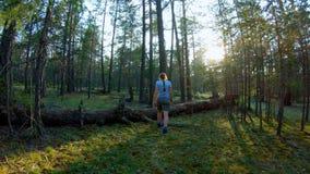 Muchacha que camina a través del bosque que camina sobre un árbol caido almacen de video