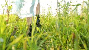 Muchacha que camina a trav?s de un prado y de lazos a trav?s de wildflowers almacen de video