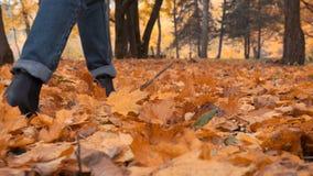 Muchacha que camina y que golpea las hojas de la caída con el pie Foco en las piernas Falta de definición de movimiento en fondo almacen de metraje de vídeo