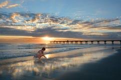 Muchacha que coge conchas marinas en la playa Fotografía de archivo