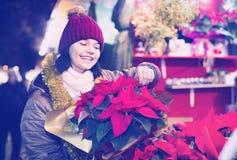 Muchacha que compra composiciones florales en el mercado de la Navidad Fotos de archivo