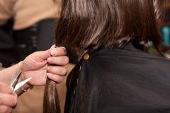 Muchacha que consigue un corte de pelo Fotos de archivo libres de regalías