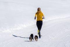 Muchacha que corre con los perros en la nieve Imagen de archivo libre de regalías