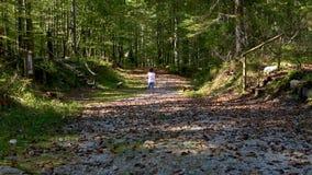 Muchacha que corre en bosque detrás de madre almacen de video