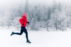Muchacha que corre en nieve en montañas del invierno imagen de archivo libre de regalías
