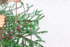 Muchacha que cuelga gotas rojas del Año Nuevo en un árbol de navidad en un fondo blanco Imágenes de archivo libres de regalías