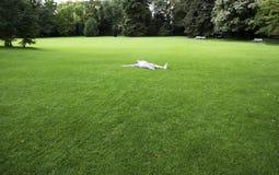 Muchacha que disfruta de un día de relajación Imagen de archivo libre de regalías