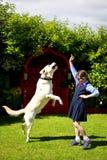 Muchacha que entrena al perro Fotografía de archivo