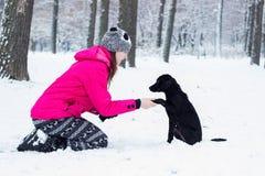 Muchacha que entrena a su perro, invierno Foto de archivo libre de regalías