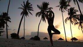 Muchacha que estira yoga por la mañana en las palmeras en el amanecer metrajes