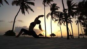 Muchacha que estira yoga por la mañana en las palmeras en el amanecer almacen de metraje de vídeo