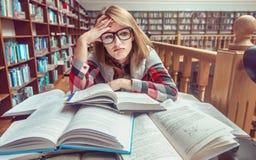 Muchacha que estudia difícilmente en biblioteca Imágenes de archivo libres de regalías