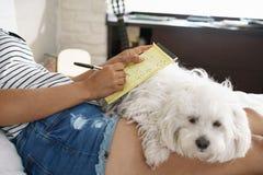 Muchacha que estudia para la preparación de la escuela con el perro en las piernas Foto de archivo libre de regalías