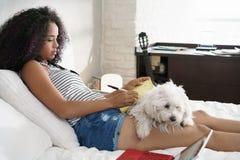 Muchacha que estudia para la preparación de la escuela con el perro en las piernas Imagen de archivo