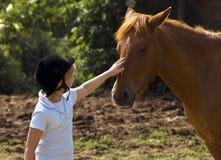 Muchacha que frota ligeramente el caballo Fotos de archivo