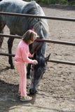 Muchacha que frota ligeramente el caballo Imagen de archivo