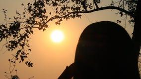 Muchacha que frota ligeramente el pelo en la puesta del sol almacen de video