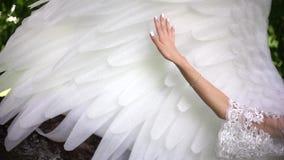 Muchacha que frota ligeramente las alas de un ángel almacen de video