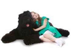 Muchacha que frota ligeramente un perro foto de archivo libre de regalías