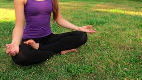 Muchacha que hace yoga en el parque almacen de video