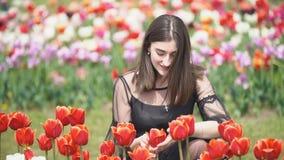 Muchacha que huele tulipanes rojos
