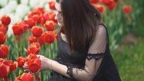 Muchacha que huele tulipanes rojos almacen de metraje de vídeo