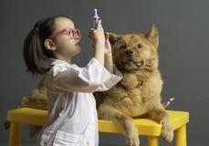Muchacha que juega al veterinario con el perro foto de archivo