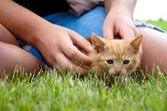Muchacha que juega con el gatito Fotografía de archivo