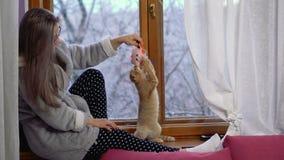 Muchacha que juega con el gatito en casa almacen de metraje de vídeo