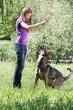 Muchacha que juega con el perro al aire libre Fotos de archivo