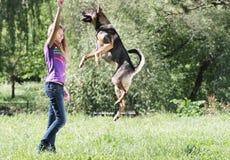 Muchacha que juega con el perro al aire libre imagen de archivo