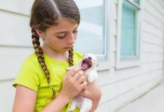 Muchacha que juega con el perro casero de la chihuahua del perrito Foto de archivo