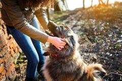 Muchacha que juega con el perro de pastor caucásico, otoño Fotos de archivo libres de regalías