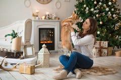 Muchacha que juega con la rebeca feliz del Corgi Galés del perrito en el fondo del árbol de navidad y de la chimenea foto de archivo libre de regalías