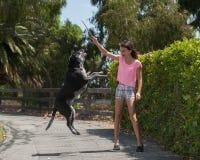 Muchacha que juega con su perro Fotos de archivo libres de regalías