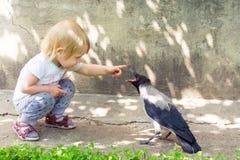 Muchacha que juega con un cuervo encapuchado Fotos de archivo libres de regalías