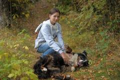 Muchacha que juega con un perro de montaña de Bernese Fotografía de archivo