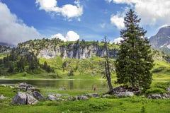 Muchacha que juega por el lago en las montañas austríacas Fotos de archivo