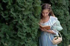 Muchacha que lee un libro en una cerca verde Imagen de archivo libre de regalías