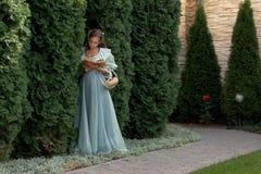 Muchacha que lee un libro en una cerca verde Imagen de archivo