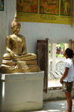 Muchacha que mira al Buddha Imagen de archivo libre de regalías