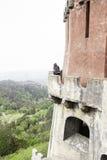 Muchacha que mira el paisaje en un castillo Foto de archivo libre de regalías