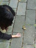 Muchacha que mira la mariposa Foto de archivo libre de regalías