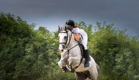 Muchacha que monta un caballo Fotografía de archivo libre de regalías